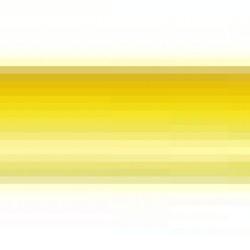 POLE SPIKE 170Cm Diam.33Mm